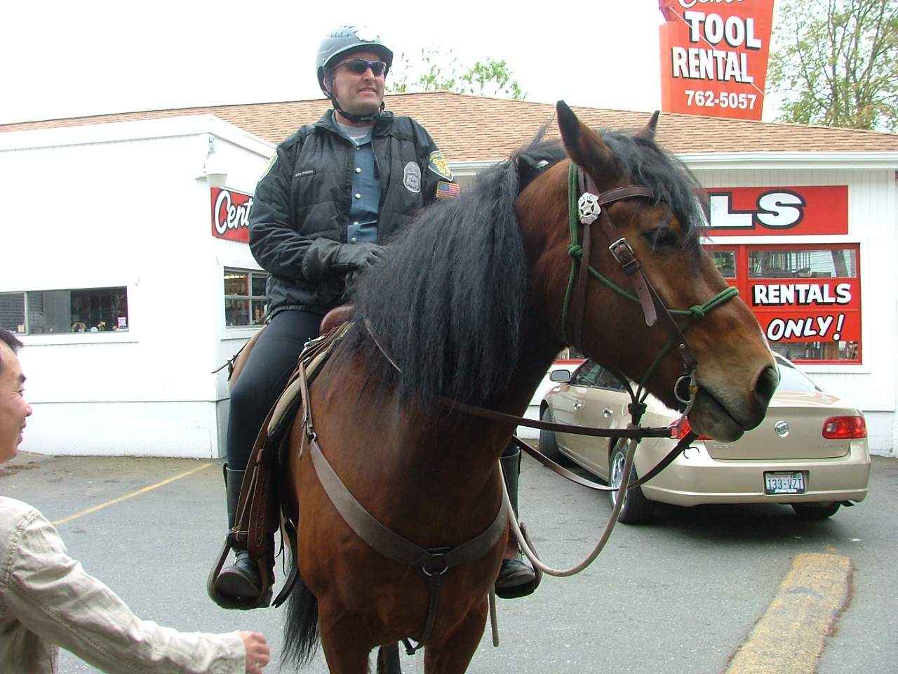SPD horse on patrol in front of Cafe Rozella